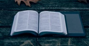 Os melhore versículos sobre pagar o mal com o bem