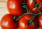 Receita cristã de molho de tomate