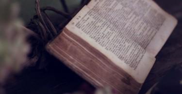 Biblia entre flores