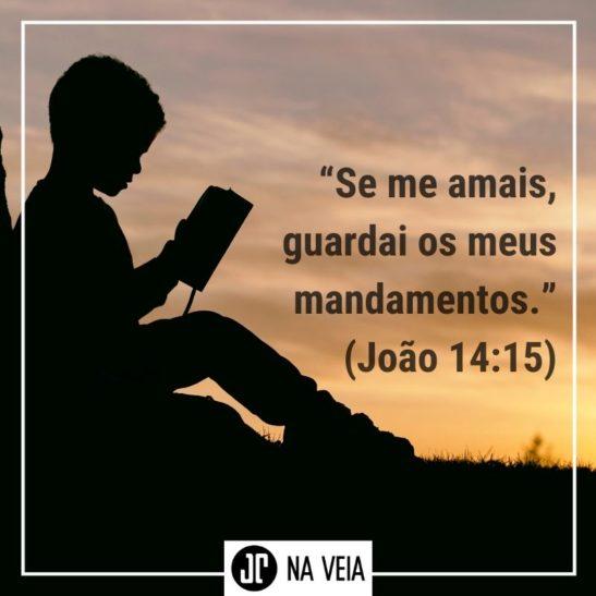 Imagem com o versículo sobre obediência de João 14:15