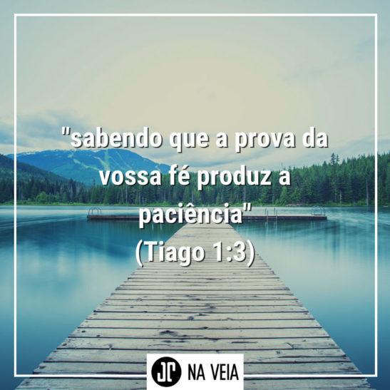 Versículo sobre paciência de Tiago 1:3