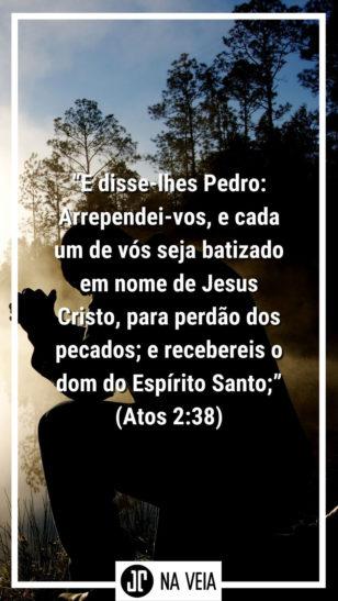 """Versículos para status - Atos 2:38""""E disse-lhes Pedro: Arrependei-vos, e cada um de vós seja batizado em nome de Jesus Cristo, para perdão dos pecados; e recebereis o dom do Espírito Santo;"""" (Atos 2:38)"""
