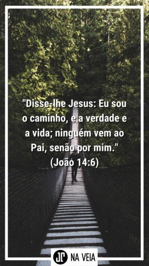 Versículos para status - João 14:6