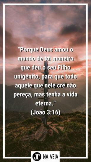 Versículos para status - João 3:16