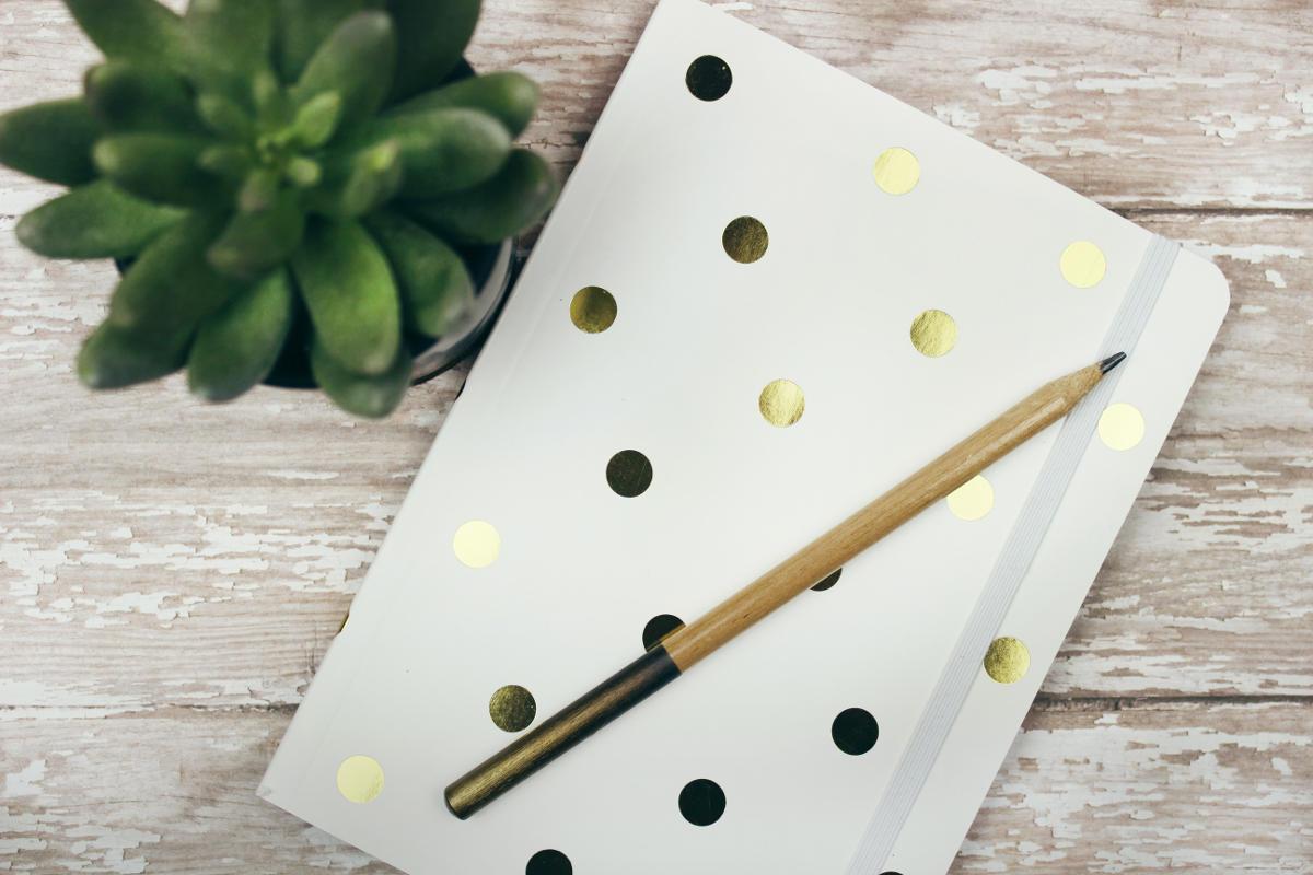 Caderno e lápis perto de planta representando os Versículos mais utilizados na internet