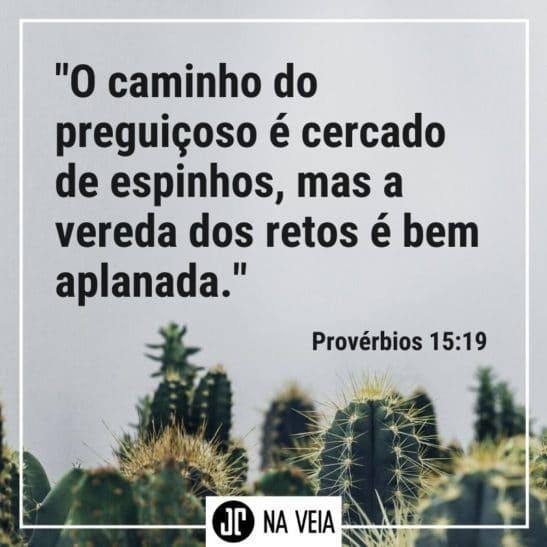 Imagem sobre preguiça - Pv 15:19