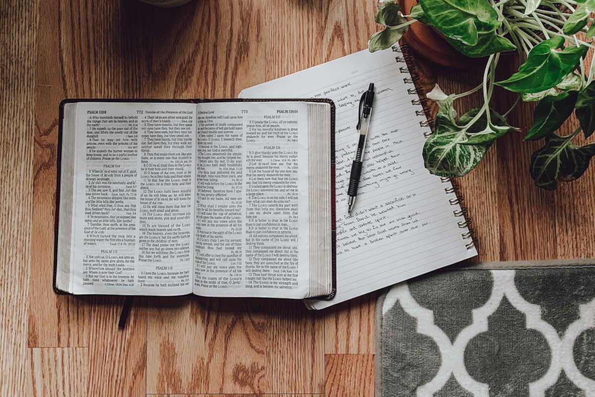 Bíblia e planta sobre a mesa