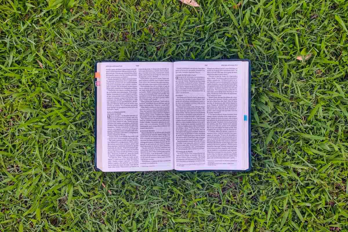 biblia-na-grama